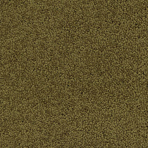 050.brown plain_mottled (091028-040)