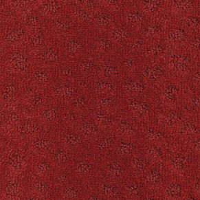 010.red patterned (000010-112)