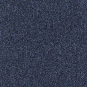 070.blue plain_mottled (000010-304)